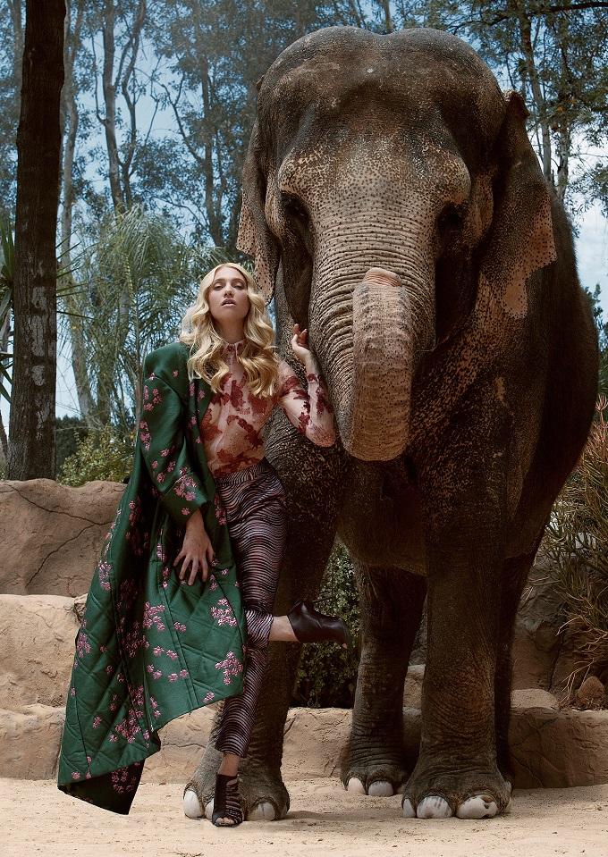 Autumn For The Elephants by Jvdas Berra