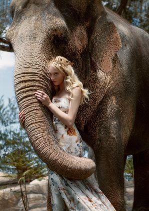 Autumn For The Elephants by Jvdas Berra