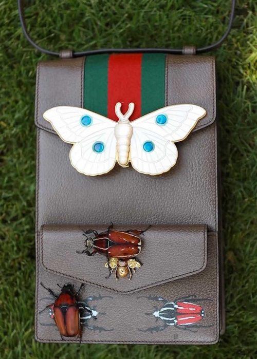 Il Collezionista di insetti da Gucci