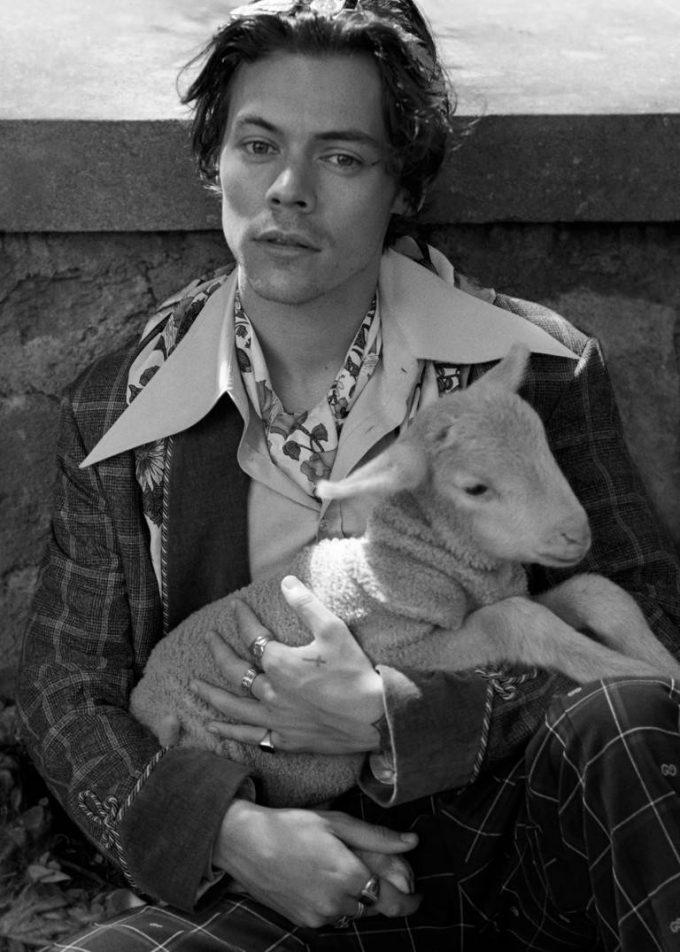 Harry Styles protagonista della nuova campagna Gucci Tailoring scattata nei giardini di Villa Lante.
