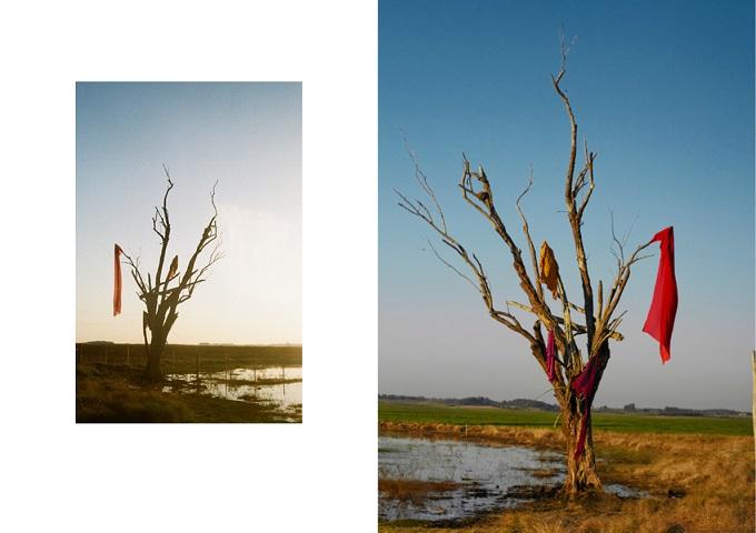LÁ FORASogni d'arte contemporanea. Fotografia di Mario Lopes e Direzione artistica diNatalia Caffarate