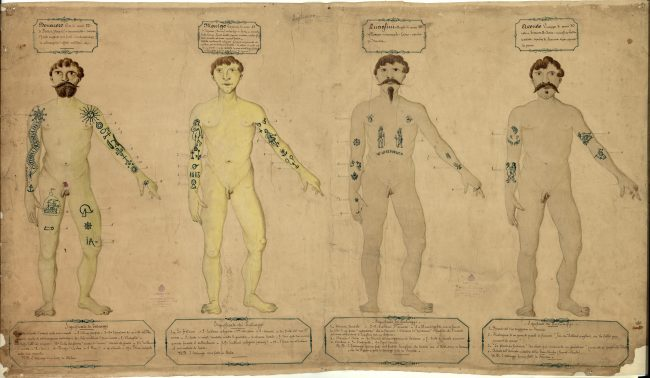 TATTOO. L'arte sulla pelle | MAO Museo d'Arte Orientale