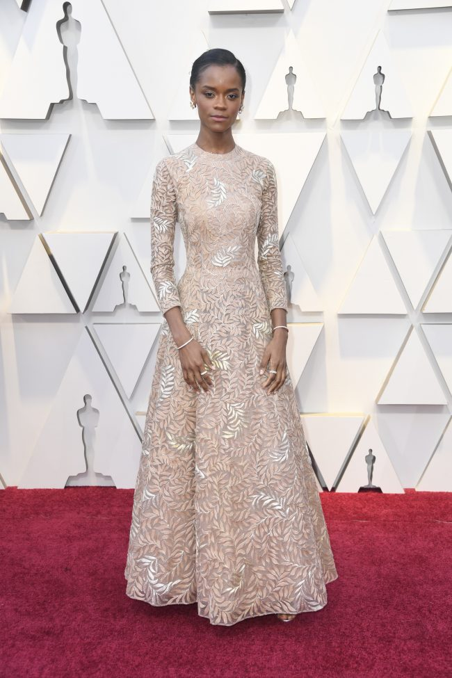Stars in Dior: 91st Annual Academy Awards