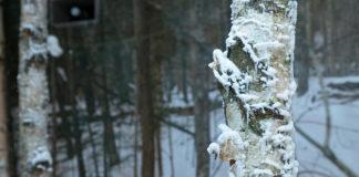 Woolrich celebra il 190esimo Anniversario con un'istallazione speciale
