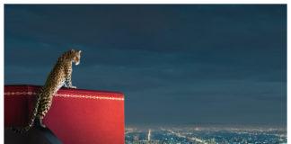 Cartier Confidential: Elisabetta II - Tiare, spille e gufi di diamanti