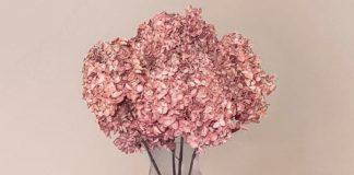 Sostenibilità e stagionalità per rilanciare la filiera del fiore torna in voga il flower design con #Tifacciounmazzo