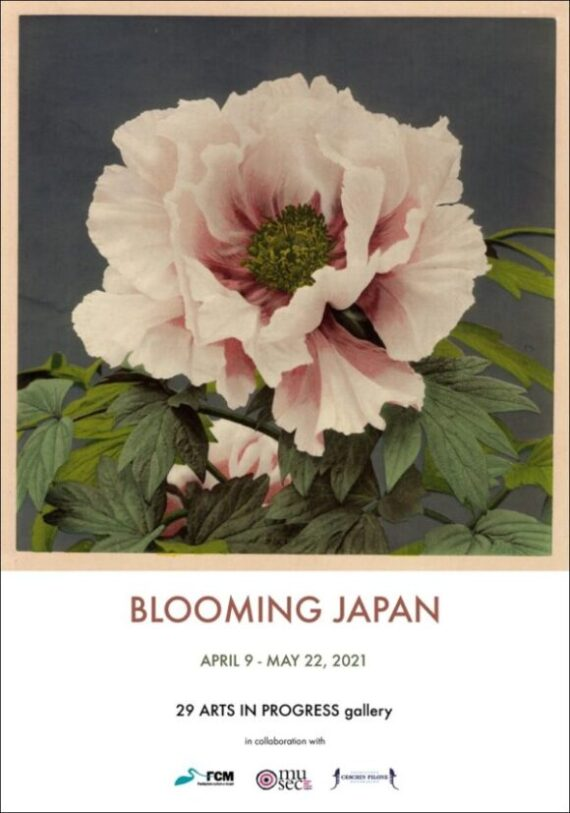 Blooming Japan