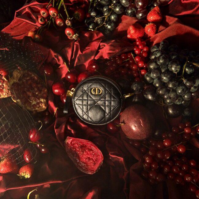 Dior Caro Line Small Leather Accessories