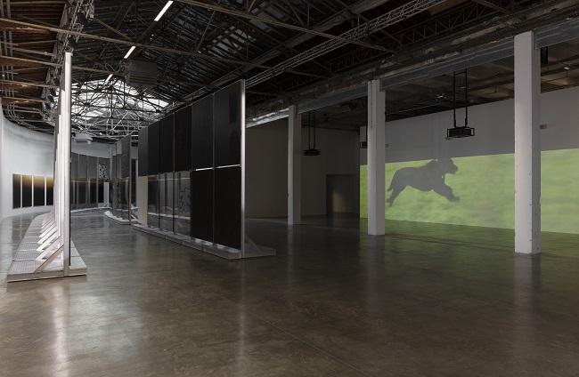 """Burberry sostiene la Mostra """"Natures Mortes"""" diAnne Imhof al Palais de Tokyo"""